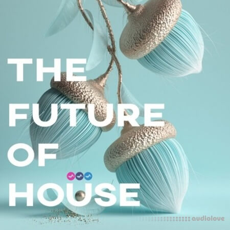Soundsmiths The Future Of House WAV Synth Presets