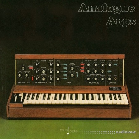 Touch Loops Analogue Arps