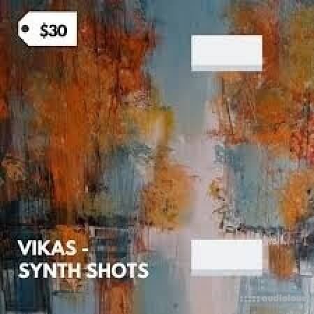 Vikas Synth Shots Library WAV