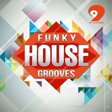 99 Patches Funky House Grooves