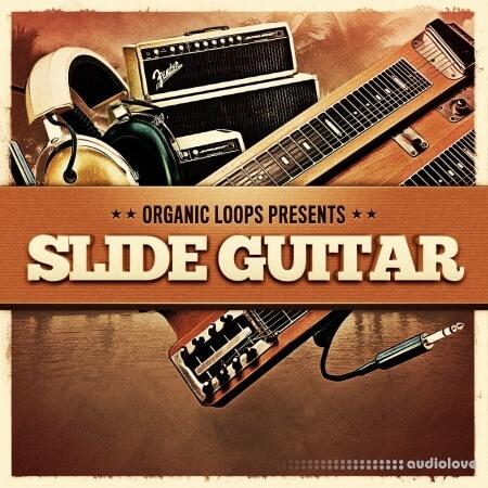 Organic Loops Slide Guitar WAV REX