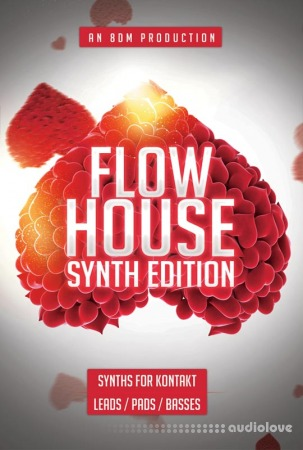 8Dio 8DM Flow House Synth Edition