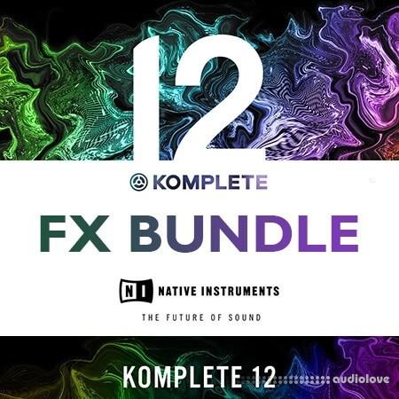 Native Instruments KOMPLETE 12 FX Bundle 2020.6 CE
