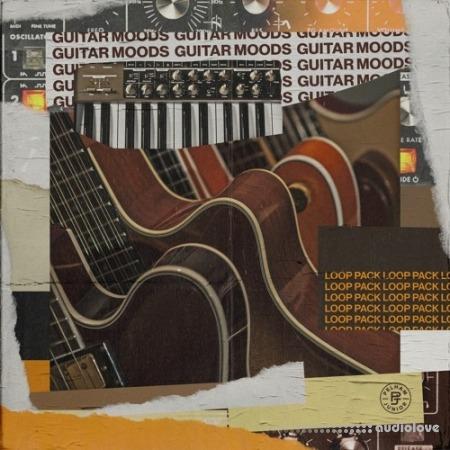 Pelham And Junior Guitar Moods Vol.1 (Loop Pack)