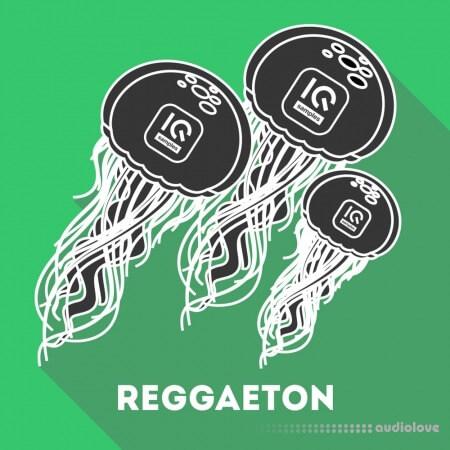 IQ Samples Reggaeton