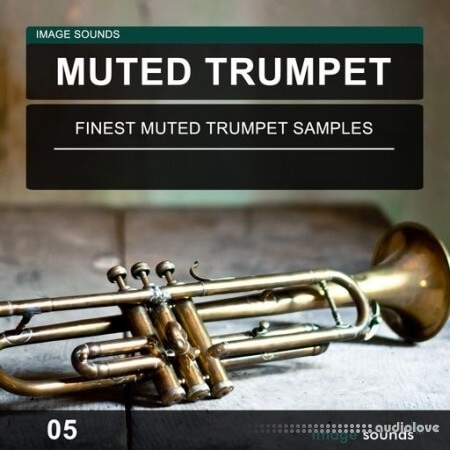 Image Sounds Muted Trumpet 05