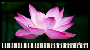 Udemy How to Compose Relaxing Music