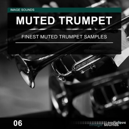 Image Sounds Muted Trumpet 06