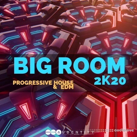 Audentity Records Big Room 2k20 WAV Synth Presets