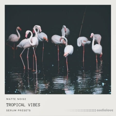 GOGOi Tropical Vibes