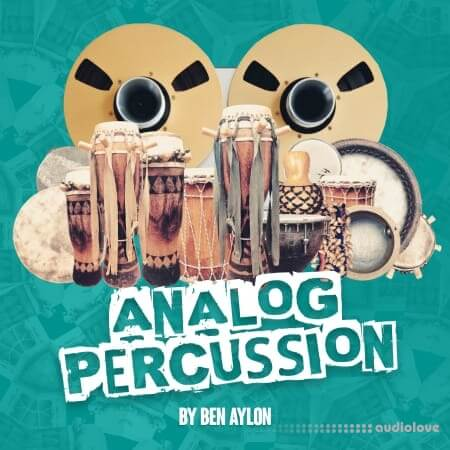 RARE Percussion Analog Percussion by Ben Aylon