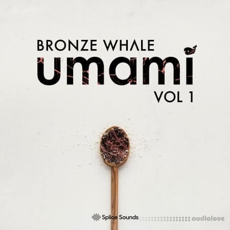 Splice Sounds Bronze Whale Umami Sample Pack WAV MiDi