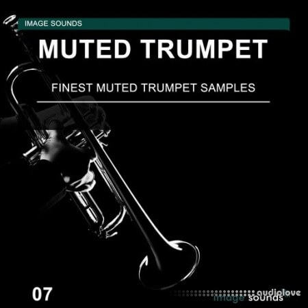 Image Sounds Muted Trumpet 07
