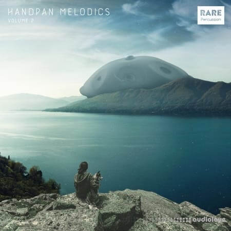 RARE Percussion Handpan Melodics Vol.2