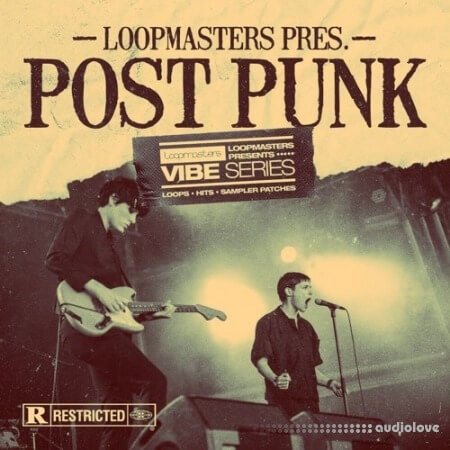 Loopmasters VIBES 13 Post Punk WAV REX