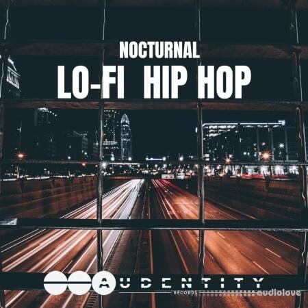 Audentity Records Nocturnal Lo-Fi Hip Hop