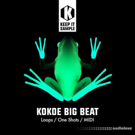 Keep It Sample Kokoe Big Beat