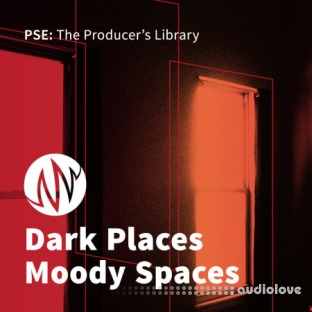PSE: The Producers Library Dark Places, Moody Spaces
