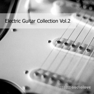 Realsamples Electric Guitar Collection Vol.2