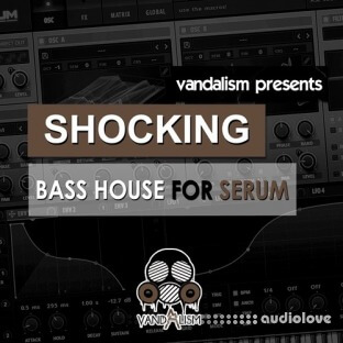 Vandalism Shocking Bass House