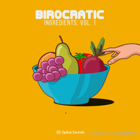 Splice Sounds Birocratic's Ingredients Sample Pack