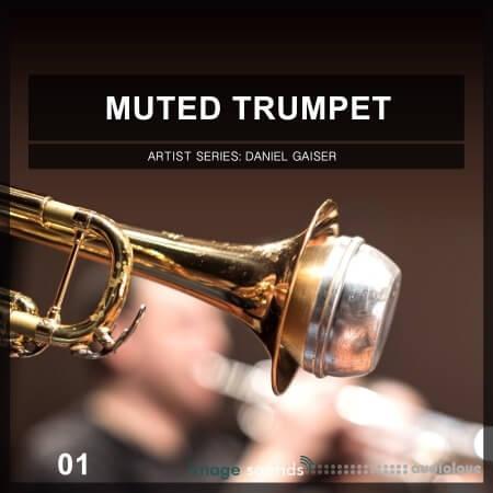 Image Sounds Artist Series Daniel Gaiser Muted Trumpet 01