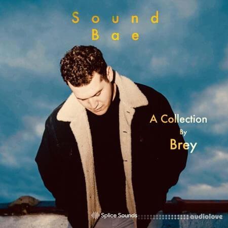 Splice Sounds Sound Bae A Collection by Brey WAV