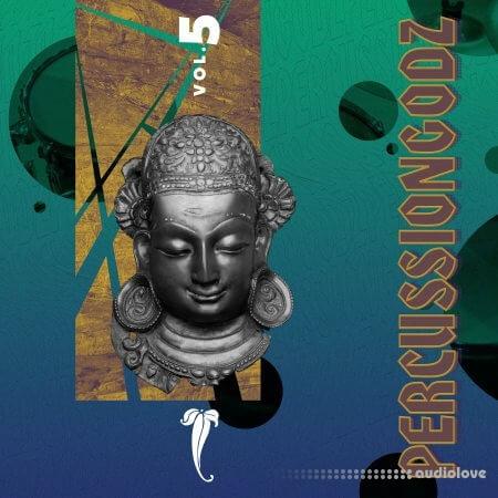 RARE Percussion PercussionGodz Vol.5 WAV