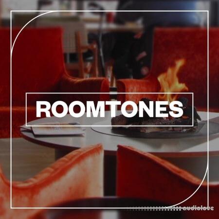 Blastwave FX Roomtones WAV