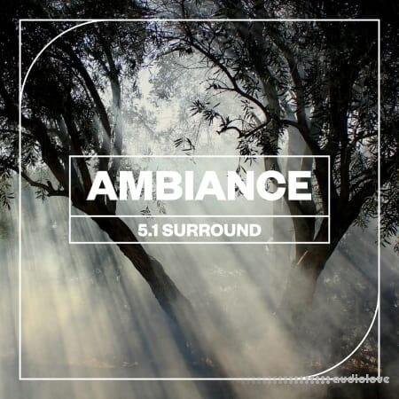 Blastwave FX Ambiance 5.1 Surround