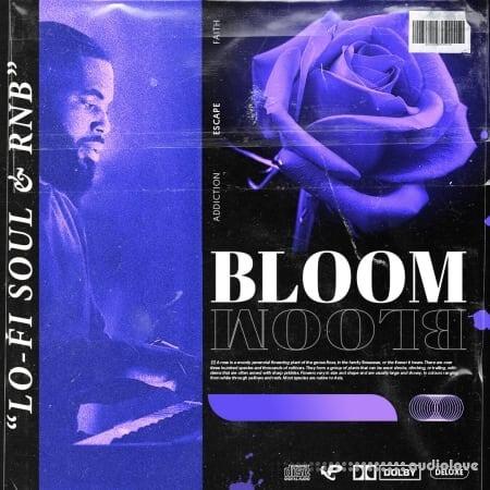 Prime Loops BLOOM RnB Soul Keys