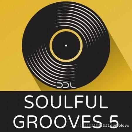 Deep Data Loops Soulful Grooves 5