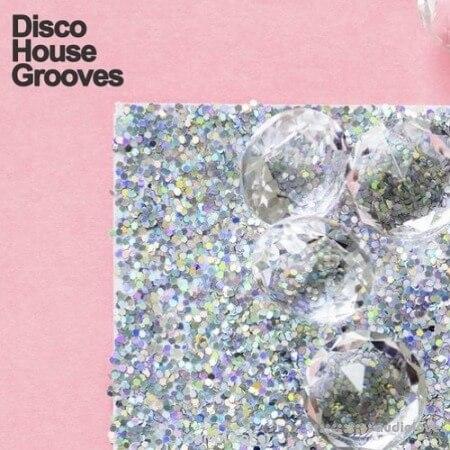 Samplestar Disco House Grooves