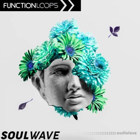 Function Loops Soulwave