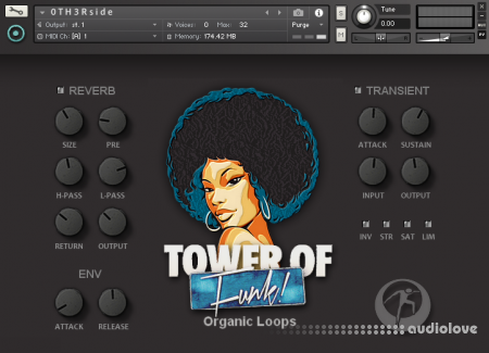 Organic Loops Tower Of Funk