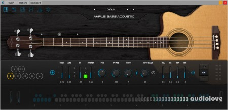 Ample Sound Ample Bass Acoustic