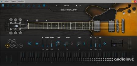 Ample Sound Ample Guitar Semi Hollow