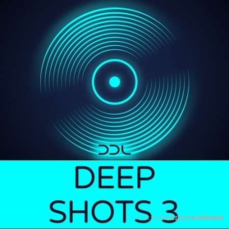 Deep Data Loops Deep Shots 3