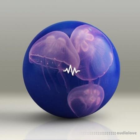 WavSupply Manso JellyFish (Dancehall Drum Kit)