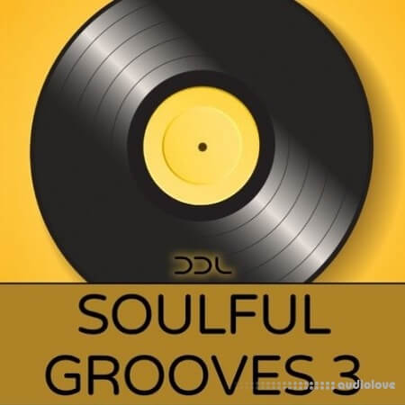 Deep Data Loops Soulful Grooves 3