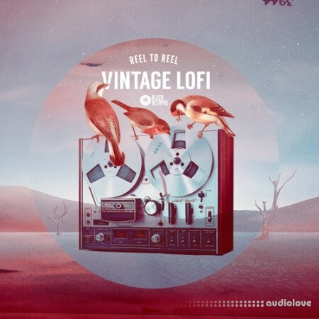 Black Octopus Sound Reel to Reel Vintage Lofi