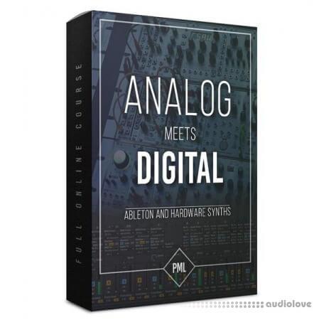 Production Music Live Analog Meets Digital