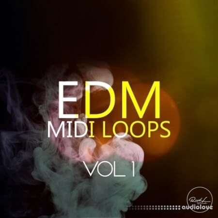Roundel Sounds EDM MIDI Vol.1
