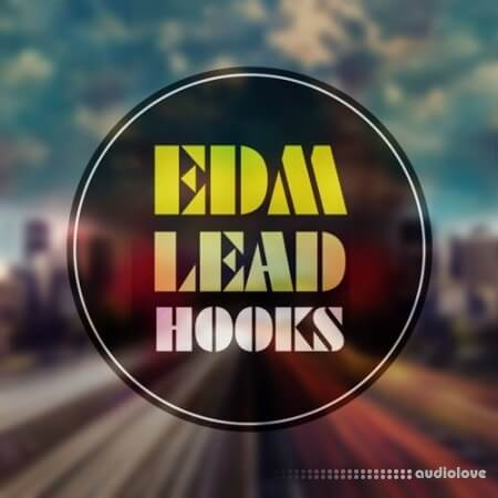 Roundel Sounds EDM Lead Hooks Vol.1