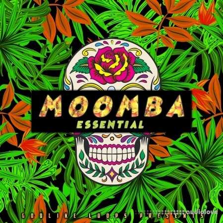 Godlike Loops Moomba Essential