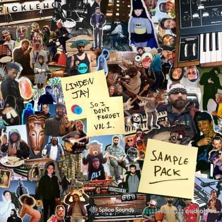 Splice Sounds Linden Jay So I Dont Forget Sample Pack