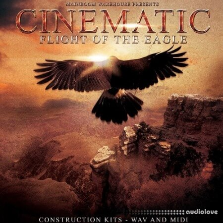 Mainroom Warehouse Cinematic Flight Of The Eagle MULTiFORMAT