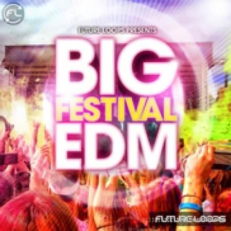 Future Loops Big Festival EDM