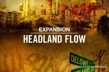 Native Instruments Maschine Expansion Headland Flow
