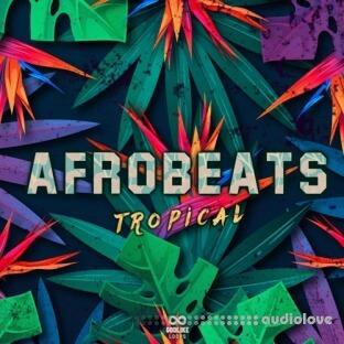 Godlike Loops Afrobeats Tropical
